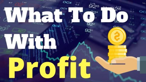 We've concluded a deal - what to do with the profit?