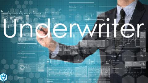 תפקיד המשכתב בהלוואת הארד מאני - Underwriter