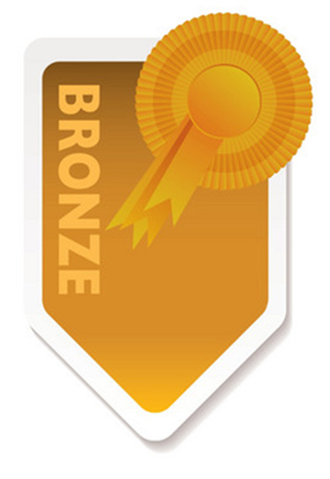Bronze Subscription - Real Smart Partner