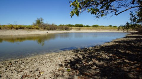 New Listing - 50 +/- acre Blumata Rare opportunity to hold 50 +/- acre from ...