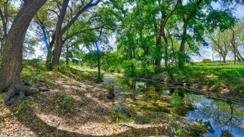 Ferme Miller Creek | CARPENTER LEDYARD
