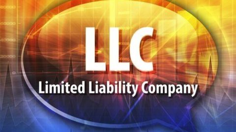 #           ©       ¢ *  ¤      4 g TO LLC OR NOT TO LLC  ©                 ×        ¤  ¢                        §     ×       ...